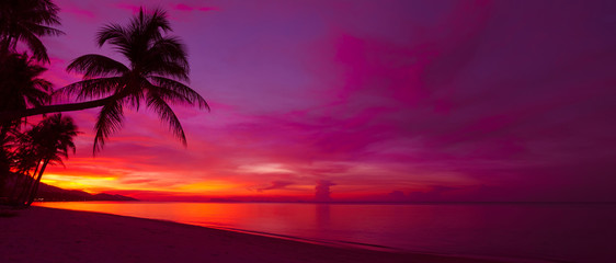 Tropical sunset with palm tree silhouette panorama © Dmytro Sukharevskyi