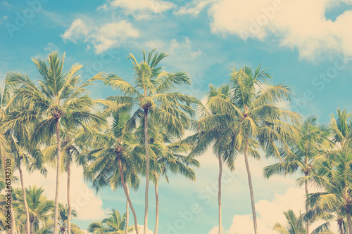 Foto op Canvas Retro Vintage tropical palm trees