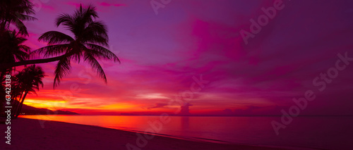 Foto op Canvas Strand Tropical sunset with palm tree silhouette panorama
