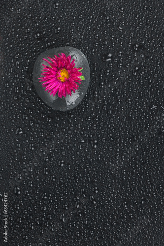 Zen stone  and flower with water drops