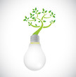 lightbulb and green growing tree. illustration