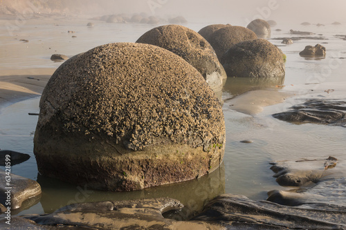 detail of Moeraki boulders