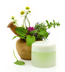 Wooden mortar with herbs and cosmetic cream