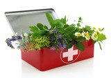 Fresh herbs in first aid kit.