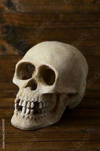 Skull on wooden background
