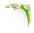 Papierecke mit Wiese und Schmetterlingen