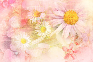 Pretty daisies artistic background