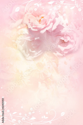 Beautiful, soft roses, romantic background