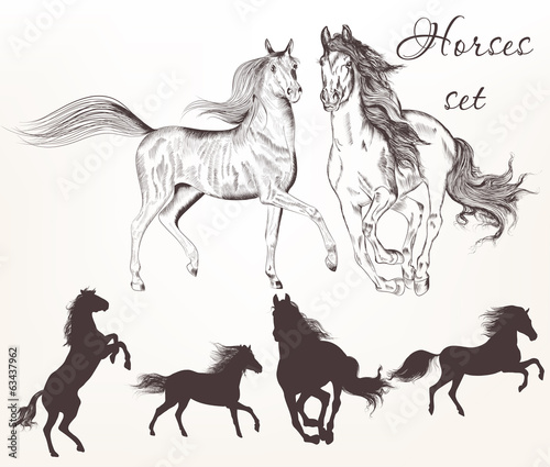 Collection of vector hand drawn horses