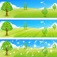 空 木 風景