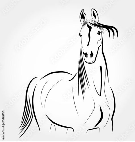 Beauty Horse portrait logo vector