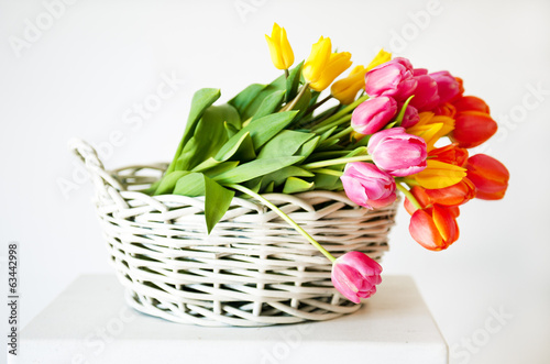 Tulips in the basket