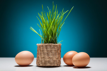 Easter still life with eggs and grass in a basket.
