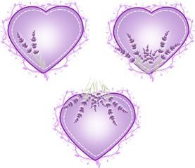 Lavender heats