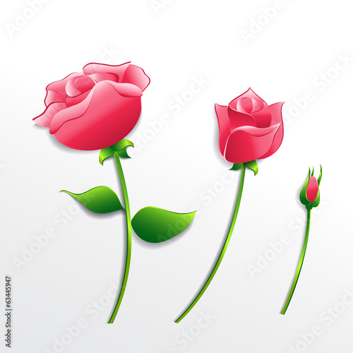 Collection of pink paper roses on an isolated background. Vector