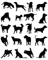 Black silhouettes of dog breeds, vector