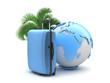 Travel luggage, palm tree and earth globe
