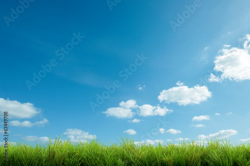 canvas print picture green grass and blue sky with clouds