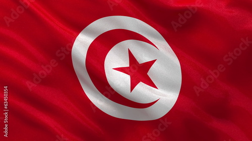 Flag of Tunisia waving in the wind - seamless loop