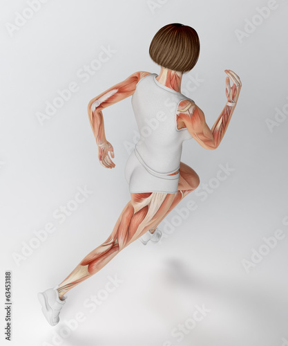 Female runner anatomy