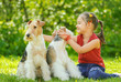 Young Girl and two fox terriers
