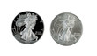 Proof and Uncirculated American Silver Eagle Dollar Coins isolat