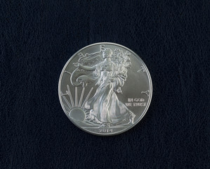 Uncirculated American Silver Eagle Dollar Coin