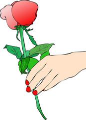 Una Rosa Rossa per te