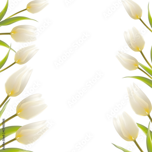 Tulip spring flowers bouquet for your card design.