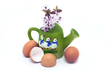 eggs and blossom in green watering can with geese
