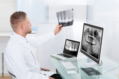 Fototapeta Doctor or radiologist looking at an x-ray online