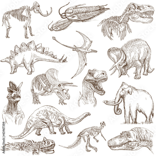 Dinosaurs no.3 - an hand drawn illustrations, vector set