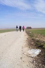 Walking reporters