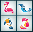 vector collection of bright birds signs, symbols and icons