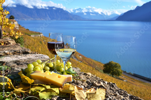 Two wineglasses, cheese and grapes on the terrace of vineyard in