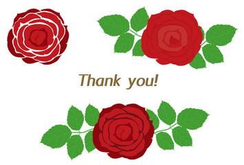 真っ赤な薔薇の花のThnak you カード