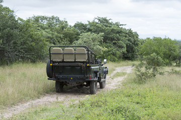 open safari in south africa nature