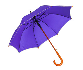 Violet blue umbrella