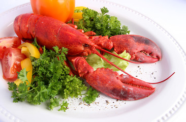 Cooked lobster with various vegetables on white plate
