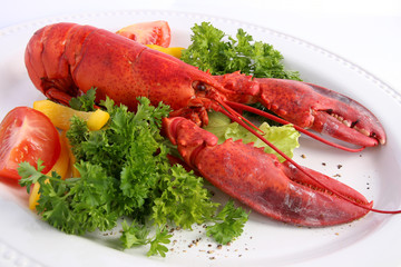 Cooked lobster with various vegetables on white plat