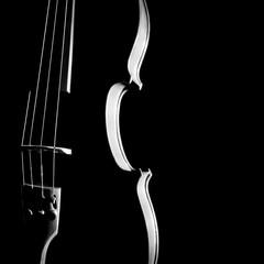 Violin orchestra musical instruments