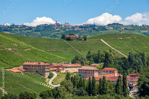 Vineyards and winery in Piedmont, Italy.