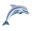 Dolphin. Eps8 vector illustration. Isolated on white background - 63483992
