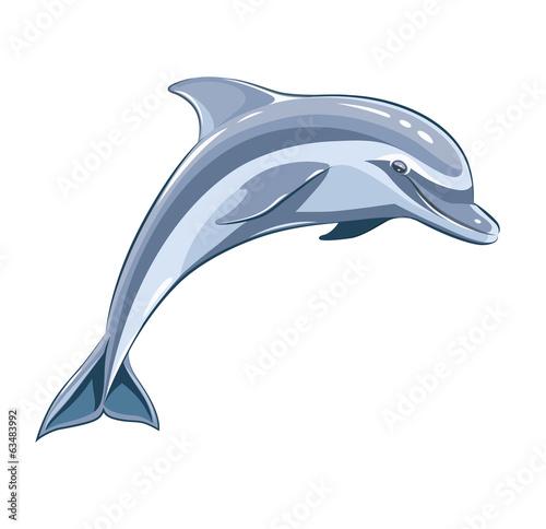 Fototapeta Dolphin. Eps8 vector illustration. Isolated on white background
