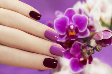 Двухцветный маникюр с орхидеями.