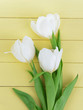 Beautiful bouquet of white tulips on light yellow background