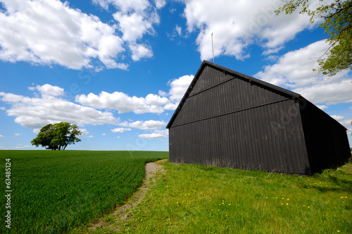 Barn and nature