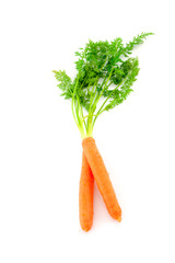 Fresh organic carrots on white background