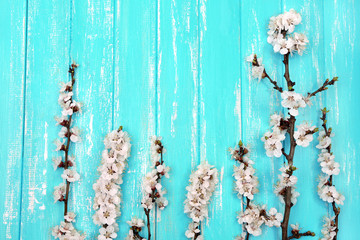 Blooming bud on color wooden background