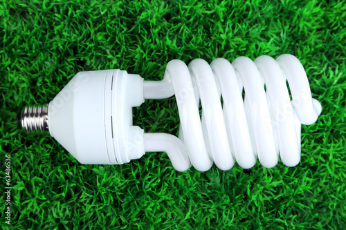 Energy saving light bulb on green grass background